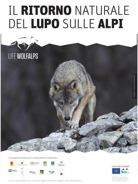 poster-wa2b